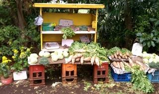 野菜は採れたてがうまい!買うなら直売所がおすすめ!-練馬のおすすめニュース編集室