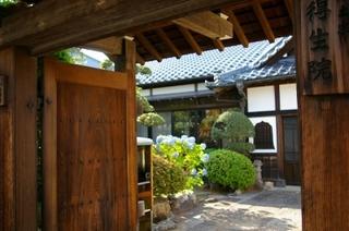 練馬にある小さな寺町「十一ヶ寺」で蕎麦喰地蔵に会う-練馬のおすすめニュース編集室
