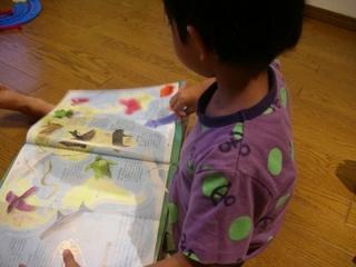 読み聞かせも楽しい! 絵本を読むならこひつじ文庫-練馬のおすすめニュース編集室