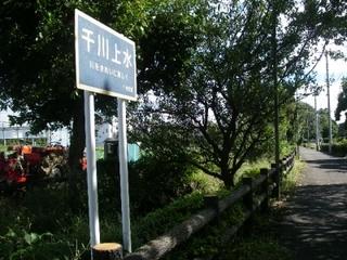 散歩にいい季節。千川上水のほとりを歩いてみよう-練馬のおすすめニュース編集室