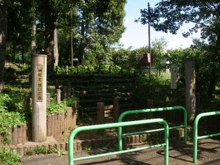 街かどで発見!「憩いの森」で秋の散歩-練馬のおすすめニュース編集室