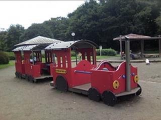 自然がいっぱい! 大泉中央公園で遊ぼう-練馬のおすすめニュース編集室