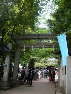 個性あるお祭りが開かれる石神井氷川神社-練馬のおすすめニュース編集室