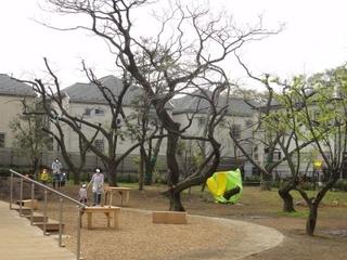 練馬区にある子供が楽しく遊べる公園-練馬のおすすめニュース編集室